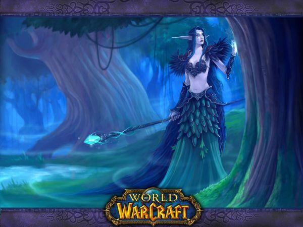World Of Warcraft -Elfes